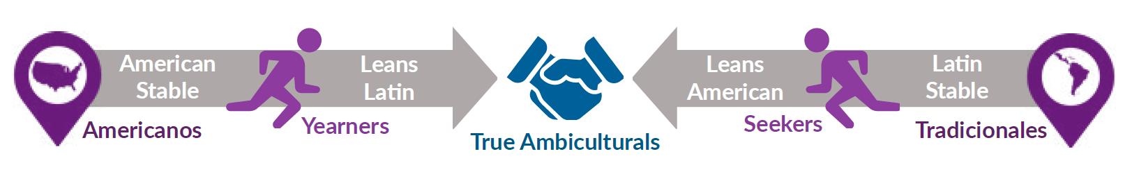Ambicultural Fluidity Segments